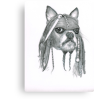 Capt. Jack Dog Sparrow Canvas Print