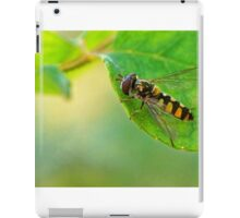 insect on rose bush iPad Case/Skin