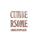 cumbersome multiples by cumbersome multiples