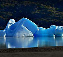 Iceberg by Peter Hammer