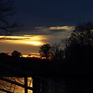 Sunset Waterway by Kathy Baccari