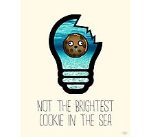Not the brightest cookie in the sea Photographic Print