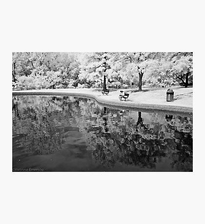 Quiet Spot Photographic Print