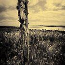 North Uist #1 by David Robinson