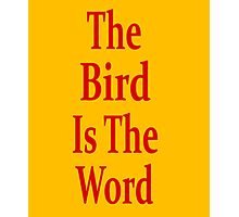 The Bird Is The Word - Family Guy - (Designs4You) Photographic Print