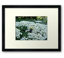 Life From a Smaller Point of View Framed Print