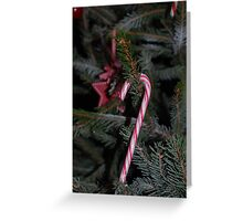 Sweet Tree Treats Greeting Card