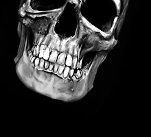 skull on black 2 by aaronnaps