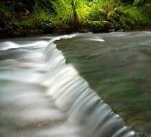 Mokoroa Falls Collection # 7 by Michael Treloar