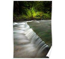 Mokoroa Falls Collection # 7 Poster
