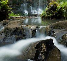 Mokoroa Falls Collection # 4 by Michael Treloar