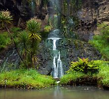 Mokoroa Falls Collection # 6 by Michael Treloar