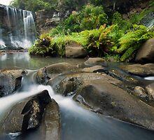 Mokoroa Falls Collection # 3 by Michael Treloar