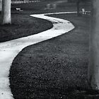 Cycleway by Deephill