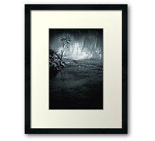 Sapling Framed Print
