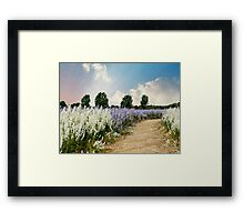 Coloured Landscape Framed Print