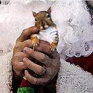 Santa's Hands by Kay Kempton Raade
