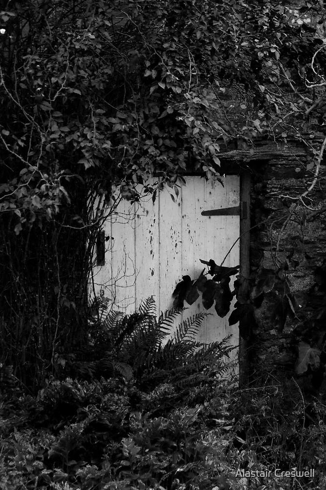 Secret Door by Alastair Creswell