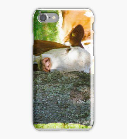Hide & seek??  iPhone Case/Skin