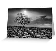 Malham Tree 02 - Yorkshire Dales, UK Greeting Card