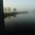 Morning Cobwebs by Mjay