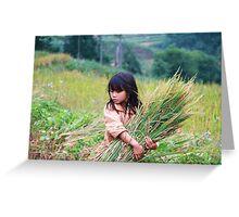 Rice fields Greeting Card