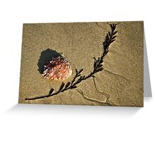 Sand Art ~ Lyme Regis Greeting Card