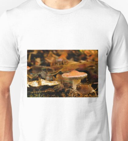 0157 Emerging from the Debris T-Shirt
