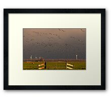 The Eempolder Framed Print