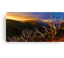 0389 Mt Hotham Brush Canvas Print