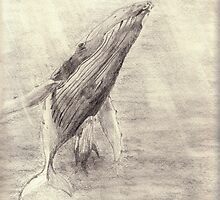 Whale sketch - pencil by gogston