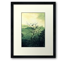 I met a Tree Framed Print