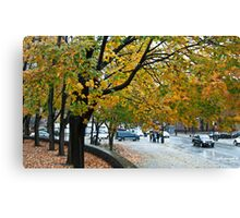 Whispering trees Canvas Print