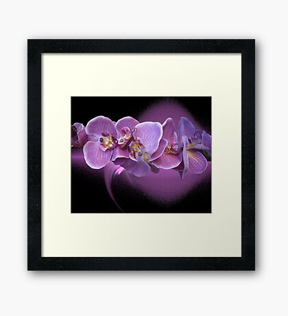 A Lovely Creation Framed Print