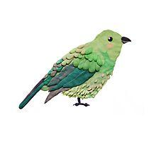 Plasticine bird Photographic Print