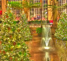 Christmas at Longwood Gardens by marianne troia