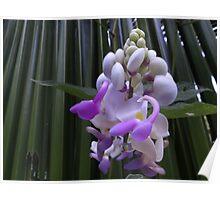 Blossom Of Weed - Flor De Hierbajo Poster