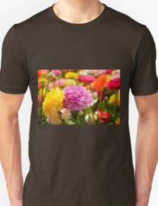 field of multicoloured cultivated Buttercup (Ranunculus) flowers T-Shirt