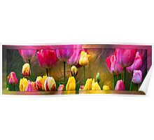 Tulips On Silver Poster