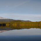 Lake Trillium Vista by Marvin Mast