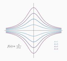 Function Plot - A/(x^2 + 1) Kids Clothes