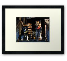 Casey And Bowser Framed Print