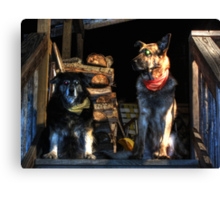 Casey And Bowser Canvas Print