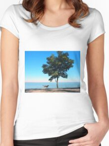 Big tree and the walking path along the lake shore Women's Fitted Scoop T-Shirt