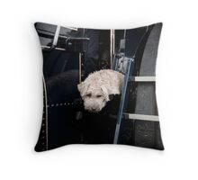 Metal and Fluff Throw Pillow
