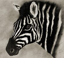 THE ZEBRA by Leny .