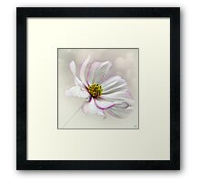 Fly with me... Framed Print