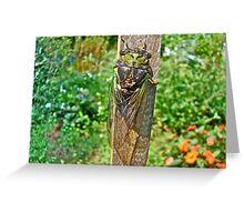 Annual Cicada - Tibicen linnei Greeting Card