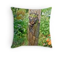 Annual Cicada - Tibicen linnei Throw Pillow