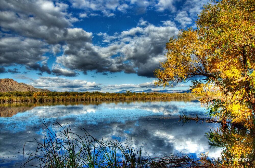 The Mirror by Saija  Lehtonen